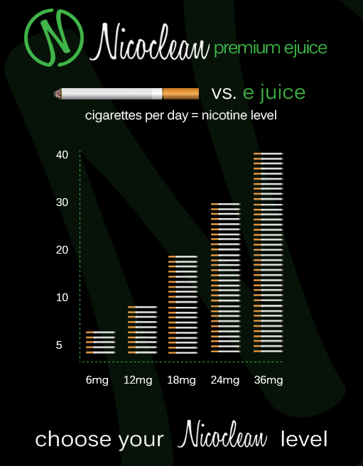 NicoClean_LLC_InfoGraphic_Design